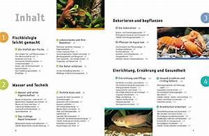 Großes Aquarium Kaufen : aquarium das gro e gu praxishandbuch ~ Frokenaadalensverden.com Haus und Dekorationen