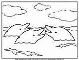 Dolphin Coloring Pages Dolphins Printable Water Baby Simple Drawing Clipart Printables Outline Van Books Surface Templates Remarkable Navigation Tim Getdrawings sketch template