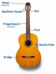 Learn Guitar In 5 Days  Guitar