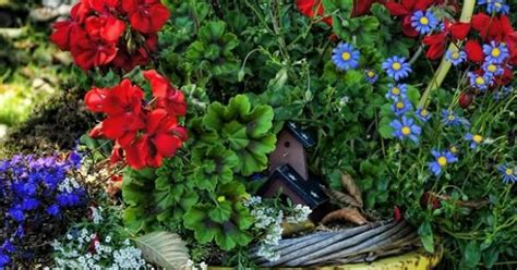 how to add character to the outside of your home add character to your outside space with this pretty old chair planter beautiful creative