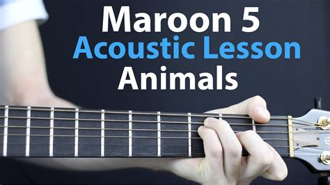 animals maroon  acoustic guitar lesson youtube