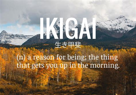 secret  okinawa ikigai finding