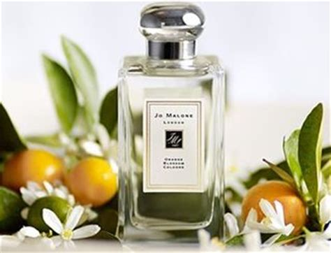 Jo Malone Orange Blossom jo malone orange blossom cologne perfume review 171 bois