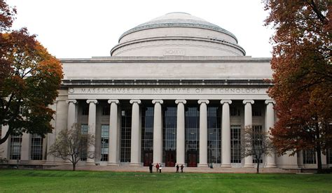 mit was mäuse fangen mit scientists create algorithm for sniffing out tax shelters