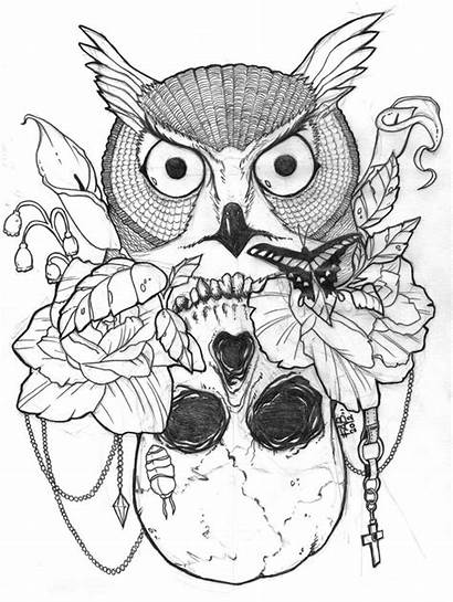Skull Owl Coloring Sugar Pages Tattoo Easy