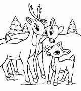 Reindeer Coloring Rudolph Nosed sketch template