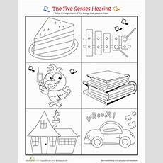Sense Of Hearing  Worksheet Educationcom