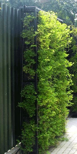 ide taman vertikal  memiliki taman  lahan
