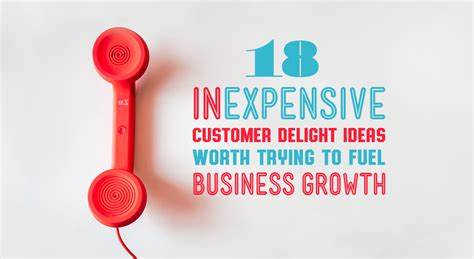 Tries Your Business Grow 19 Inexpensive Customer Delight Ideas For Ecommerce