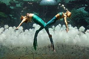 The Last Mermaid Show