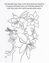 Columbine Colorado Coloring Flower State Mountain Rocky Drawings 06kb 1236 1600px sketch template