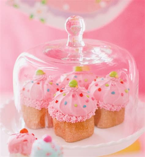 cupcake domes images  pinterest conch fritters