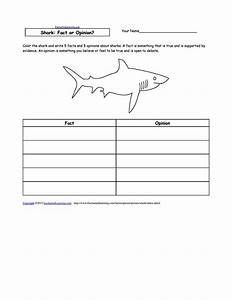 10 Best Images of Fact Or Opinion Worksheets Printable ...