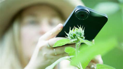 tips  shooting macro photography   iphone