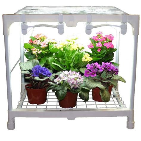 Optimizing Your Plant Growth With Indoor Grow Lights