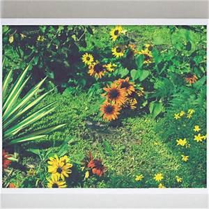 Image Gallery hippie art nature