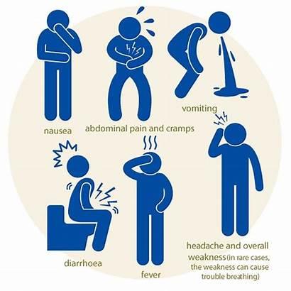 Poisoning Stomach Flu Symptoms Gastroenteritis Safety Signs