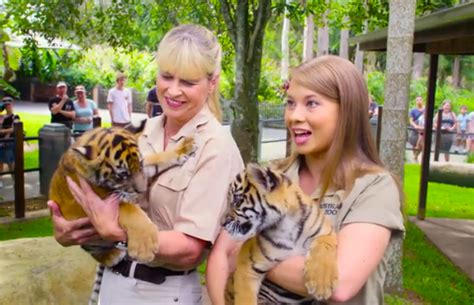 bindi irwin introduces australia zoos  tiger cubs