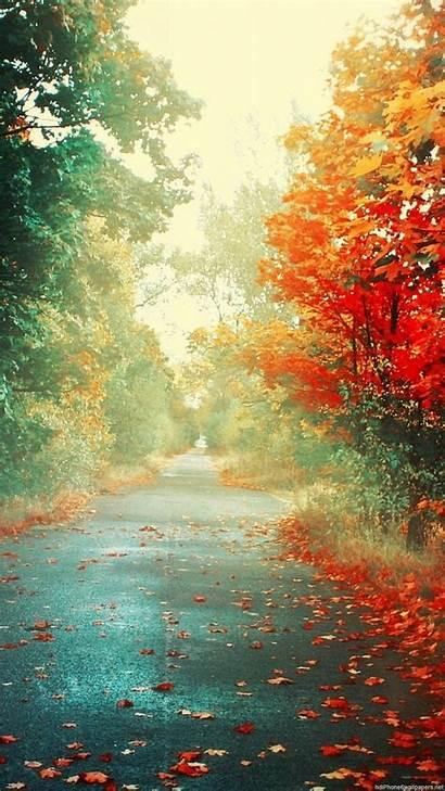 Fall Wallpapers Portrait Autumn Vertical Landscape Road