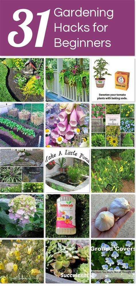 Gardening For Beginners by Gardening For Beginners Gardening Steps