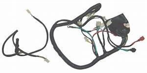 Hensim 150cc Atv Oem Whole Wire Harness Part08086