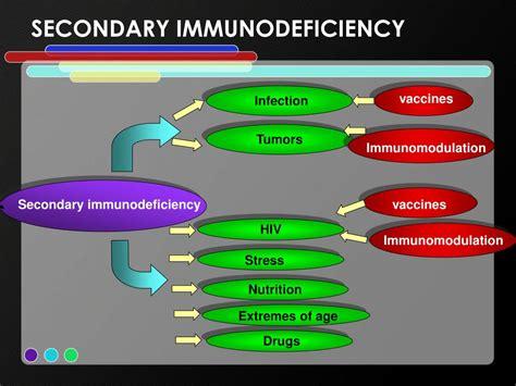Ppt Immunodeficiency Powerpoint Presentation Id4339357