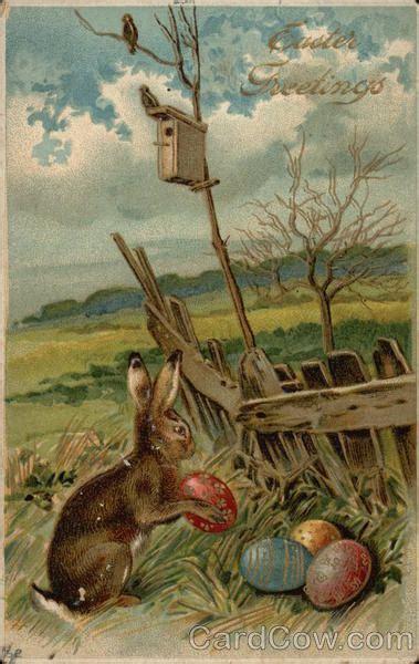 easter   bunny eggs  bunnies
