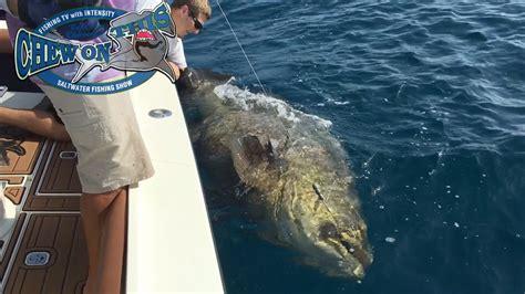grouper deep fishing sea fish biggest goliath florida ever amazing boy