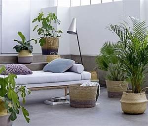 Große übertöpfe Für Zimmerpflanzen : garten feeling im wohnzimmer gr ne oase ~ Bigdaddyawards.com Haus und Dekorationen