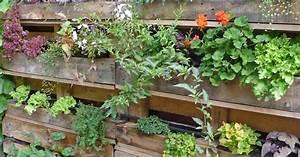 Urban gardening mein schoner garten for Katzennetz balkon mit urban vertical garden