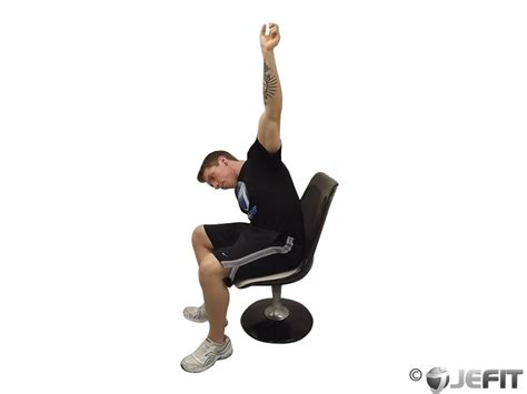 chair lower back stretch exercise database jefit