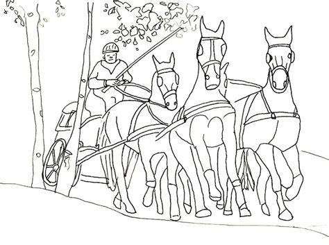 Pferde Ausmalbilder 15
