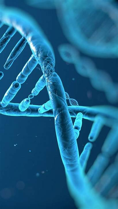 Dna Structure Droid Razr Z3 Xperia Wallpapers