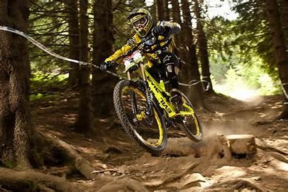 Downhill Mountain Bike Bikes Windows