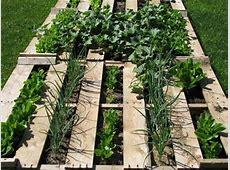 Elegant Pallet Vegetable Garden Ideas Pallets Designs