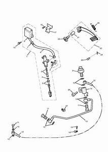 2015 Triumph Thruxton Brake Pedal Assembly  Reservoir