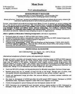 Project Manager Resume Example