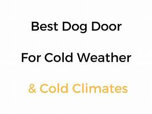 best dog door for cold weather cold climates reviews With best weatherproof dog door