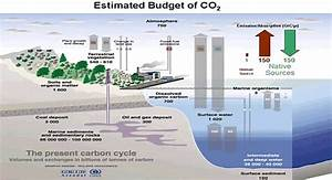 Co2 Fluxes  Sources And Sinks