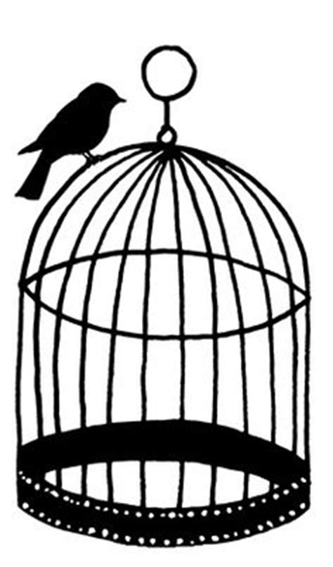 Bedroom Wall Designs bird cages | & Stickers