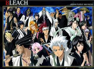 Bleach Anime images Captains and Vice Captains HD ...