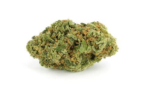 jar lights indica strains reviews swami 39 s marijuana