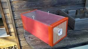 Piege A Frelon : pi ges frelons apiculture77 ~ Farleysfitness.com Idées de Décoration