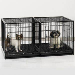 the best indoor dog crates and kennels in 2017 dogs With dog crates for multiple dogs