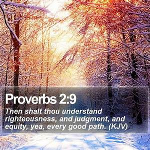 Proverbs 29 Then Shalt Thou Understand Righteousness And