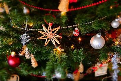 Virtual Holiday Tree Festive Bingo Reindeer Night