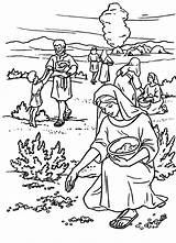 Manna Coloring Bible Pages Exodus Quail Moses Sunday Sheet Crafts Israelites Lessons Story Israel Cloud Activities Stories Del Printable Sheets sketch template
