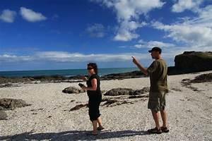 Besteht Sand Aus Muscheln : neuseeland reisebericht whatuwhiwhi cape reinga ~ Kayakingforconservation.com Haus und Dekorationen