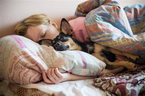 Should I Let My Dog Sleep With Me?