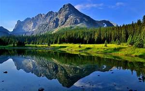 Hd, Wallpaper, Morning, Summer, Reflection, Grass, Lake, Water